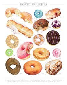 Donut Varieties // Limited Edition Food Illustration // Art Print, Colorful, Pastel, Doughnut