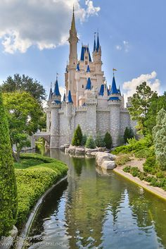 Walt Disney World, Orlando, FL.........I've always wanted to go to Disney World......to go when my grandson is older would be so great!!
