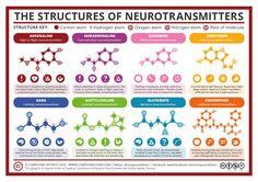 "Sahat Simarmata on Twitter: ""The Structures of #Neurotransmitters : #Adrenaline #Noradrenaline #Dopamine #Serotonin #GABA #Acetylcholine #Glutamate #Endorphins https://t.co/KfGiLMHWoI"""