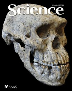A New View of Evolution by sciencemag:  This is a 1.77-million-year-old complete adult skull (braincase volume: 546 cubic centimeters) of early Homo from the site of Dmanisi, Georgia. Together with the fossilized bones of four additional individuals discovered in close proximity, the skull indicates that populations of early Homo comprised a wider range of morphological variation than traditionally assumed, which implies a single evolving lineage... #Science #Human_Evolution