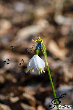 Hymn to spring