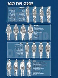 Body Type Stages #weightloss #diet: