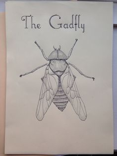 The gadfly, drawn with a calligraphy pen Calligraphy Pens, Draw, To Draw, Sketch, Tekenen, Drawings