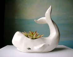 My white whale. By far THE BEST planter I have ever found. This gal is creamy white ceramic and large- over 14 inches long. Oh what say ye Cap'n Ahab? #goodhousekeeping #happyroom