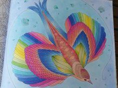 Millie Marotta - Animal Kingdom by mandarina