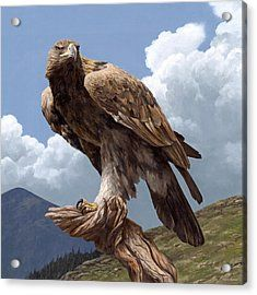 Eagle Painting - Alpine Hunter by Peter Eades Eagle Pictures, Animal Pictures, Nature Animals, Animals And Pets, Beautiful Birds, Animals Beautiful, Eagles, Largest Bird Of Prey, Eagle Painting