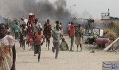 مقتل 7 أشخاص فى هجوم مسلح شمال…: مقتل 7 أشخاص فى هجوم مسلح شمال شرقى نيجيريا