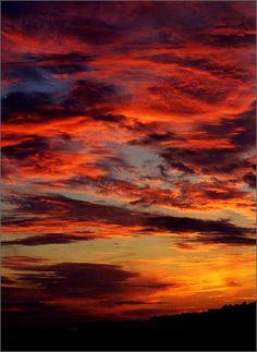 Red Sky. Isle of Palms beach, South Carolina. God is such an artist!!
