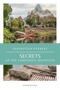 Disney World's Expedition Everest is a wild ride into the mountains of Anandapur, complete with a narrow escape from an angry Yeti, but you probably didn't know that Disney World is keeping secrets about this popular ride. Disney World Guide, Disney World Theme Parks, Disney World Tips And Tricks, Disney World Vacation, Disney Cruise, Disney Visa, Discovery Island, Keeping Secrets