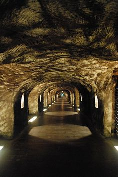 Epernay, France. Moet Chandon (caves). This is my kinda cave!!!!!