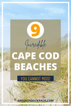 Explore the best beaches in Cape Cod, MA. Discover all the regions and beach destinations on the Cape. Usa Travel, Travel Tips, Cape Cod Beaches, Sand And Water, Destin Beach, Tropical Vibes, White Sand Beach, Cool Places To Visit, North America