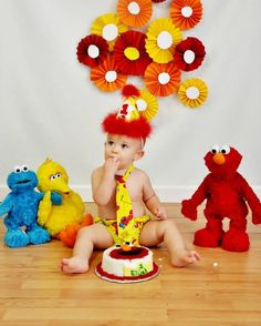 Baby Boy/ Toddler Elmo Cake Smash Outfit  for First Birthday.  Includes:  Party Hat, Tie and Diaper Cover.