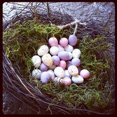 Home made bird nests