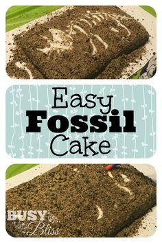 Easy Fossil Cake--My son will love this! Definitely doing this for his next birthday.