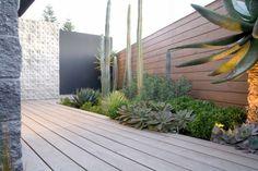 jardin amenagement plantes espace extérieur