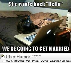 Check out: Animal Memes - She wrote back! One of our funny daily memes selection. We add new funny memes everyday! Bookmark us today and enjoy some slapstick entertainment! Funny Shit, Funny Cat Memes, Funny Cute, The Funny, Funny Stuff, Hilarious Jokes, Pet Memes, Cat Stuff, Funny Animal Pictures