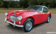 1963 Austin-Healey 3000 MKII BJ7 Roadster - Car Pictures