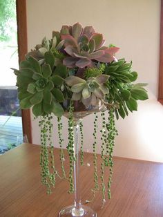 Succulent Centerpieces - Succulent Wedding Bouquets & Accessories by mandy