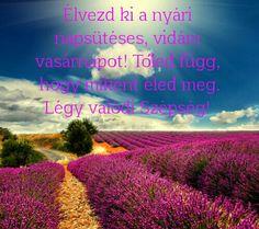 Have a great sunday! / Csodálatos vasárnapot Szépségek!