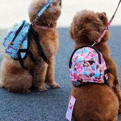 Man kan göra detta själv av Fjällrävens barnryggsäckar kanske? ☺️ Originaltext: Nylon Heart Or Flower Pattern Dog Backpack Harness For Small Dogs ...