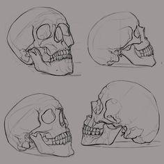Aleksey (ksenolog.deviantart.com) - Cráneo