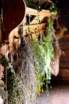 Ever dried flowers and herbs from your garden? Take a loose, small bundle of herbs or flowers - but don't make the bundle too thick. Air has to be able to flow through your herbs. I used cotton string at the hardware store) and tied my bundle
