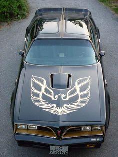 1977 Pontiac Trans Am by mercedes