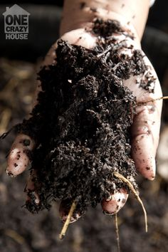 how to compost - and 30 things you didn't know you could use to feed the earth!