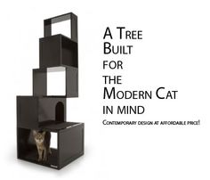 Get a cat tree with some contemporary flair