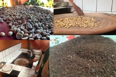 Best Coffee - Guatemala