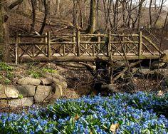 Rustic Wood Bridge (No. 22) over Ladies Pond Brook, Central Park, Manhattan, New York City by jag9889, via Flickr