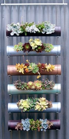 diy garden ideas Vertical gardens are a great way to create micro gardens either indoors or out, and can be used to grow all sorts of plants. Here are the 11 Best Ideas. Hanging Succulents, Succulents Garden, Planting Flowers, Succulent Planters, Succulent Display, Succulent Ideas, Hanging Pots, Fence Planters, Indoor Succulent Garden