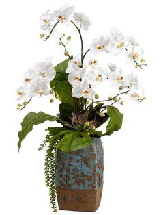 White phalla orchid arrangements