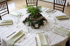 Plantas vivas , flores e temperos na decoração de casamento.