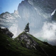 """""""Think of all the beauty still left around you and be happy. Quote Of The Day, Switzerland, Mountains, Photo And Video, Happy, Nature, Photography, Travel, Beauty"""