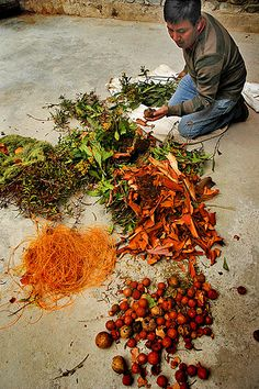 Plants being prepared to be used to dye fabrics in Mexico.