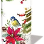 Led Licht, Poinsettia, Trends, Bird, Painting, Kraft Paper, Glass Bottles, Book Folding, Card Stock