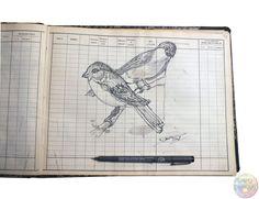 Couple de bouvreuil : encre et graphite sur papier 30 X 24 cm. ©2018 David Damour Graphite, David, Couple, Ink, Paper, Bullfinch, Artist, Graffiti, Couples