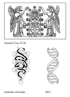 Sumerian Tree of Life
