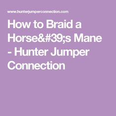 How to Braid a Horse's Mane - Hunter Jumper Connection