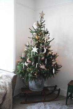 australian christmas tree ideas Weihnachten im Landhaus PS. Small Christmas Trees, Christmas Tree Themes, Noel Christmas, White Christmas, Xmas, Holiday Decor, Australian Christmas Tree, Minimal Christmas, Natural Christmas