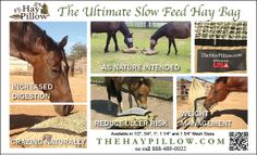 The Ultimate slow Feed Hay Bags. Take comfort in knowing your horse is eating naturally. Slow Feeder, Easy Fill, Net Bag, Risk Management, Reduce Weight, Horses, Nature, Animals, Animales