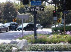 Beverly Hills Police BLUE*THUNDER BULLITT MI6 FBI Biggest Organized Crime - Carroll Trust