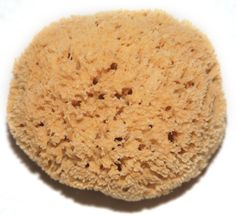12inch Honeycomb Sponge perfect for car washing!