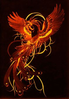Phoenix Artwork, Phoenix Wallpaper, Phoenix Drawing, Phoenix Images, Mystical Animals, Mythical Creatures Art, Fantasy Creatures, Phoenix Bird Tattoos, Phoenix Tattoo Design