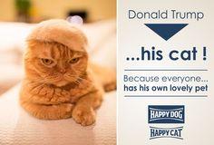 Σε παγκόσμια πρώτη αποκλειστικότητα, η γάτα του Donald Trump ...είπε κανείς κάτι ;