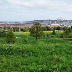 England / Angleterre Vue sur Lincoln depuis le parc au sud de la ville #omgb #lovegreatbritain by chris_voyage #travel