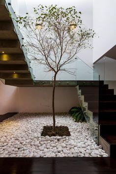 Inspiration Unique Ideas For Indoor Garden Under Stairs Interior Garden, Home Interior Design, Interior Architecture, Interior And Exterior, Home Stairs Design, Interior Stairs, House Design, Stair Design, Plafond Design