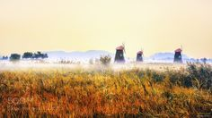 Autumn color #5 by TigerSeo. Please Like http://fb.me/go4photos and Follow @go4fotos Thank You. :-)