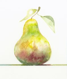 A watercolor of a pear, number 3 in a series of pears perched on colored lines Watercolor Fruit, Fruit Painting, Watercolour Painting, Watercolor Flowers, Painting & Drawing, Watercolours, Watercolor Projects, Watercolor Techniques, Painting Techniques